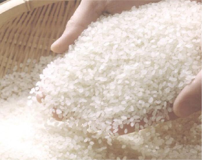 新潟の優良米の写真